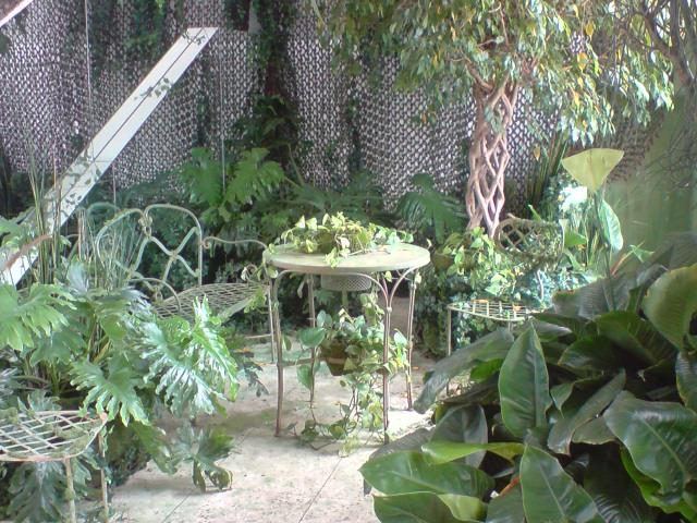 rose poudr. Black Bedroom Furniture Sets. Home Design Ideas