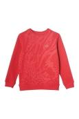 023b_SS15_LACOSTE_SJ8456_Pull_Sweater